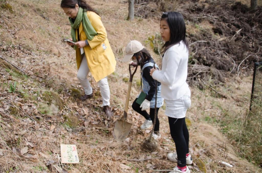 里山保全活動 植樹 竹飯 焼き芋 体験 東峰村ポーン太の森キャンプ場