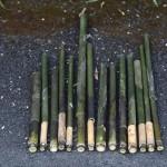 竹の空気銃